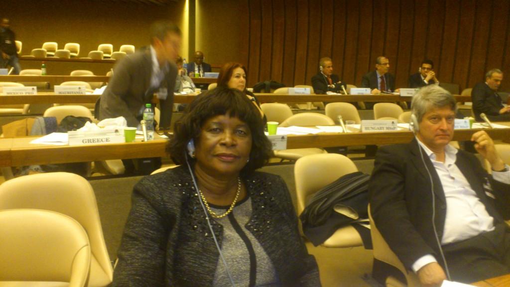 Delegada namibia