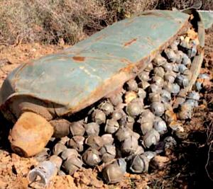 convencion-bombas-racimo-vigor-agosto2010