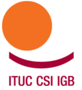 2011419-Logo_CSI_Version2