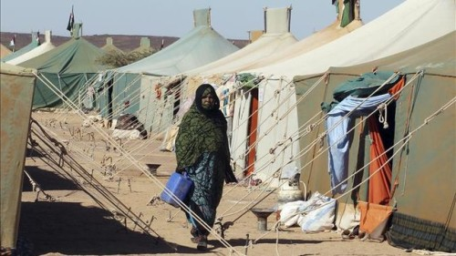 delegacion-GUE-campamentos-refugiados-saharauis_EDIIMA20151010_0146_22